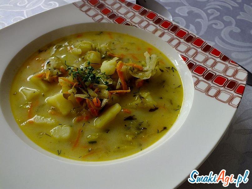 zupa ogórkowa SamkiAgi.pl